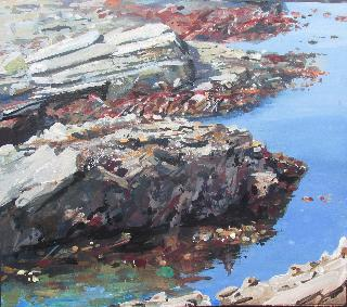 Painting Rocks, Falmouth, Painting Seaweed,Cornwall, Falmouth Cornwall, Nr Pendennis Castle