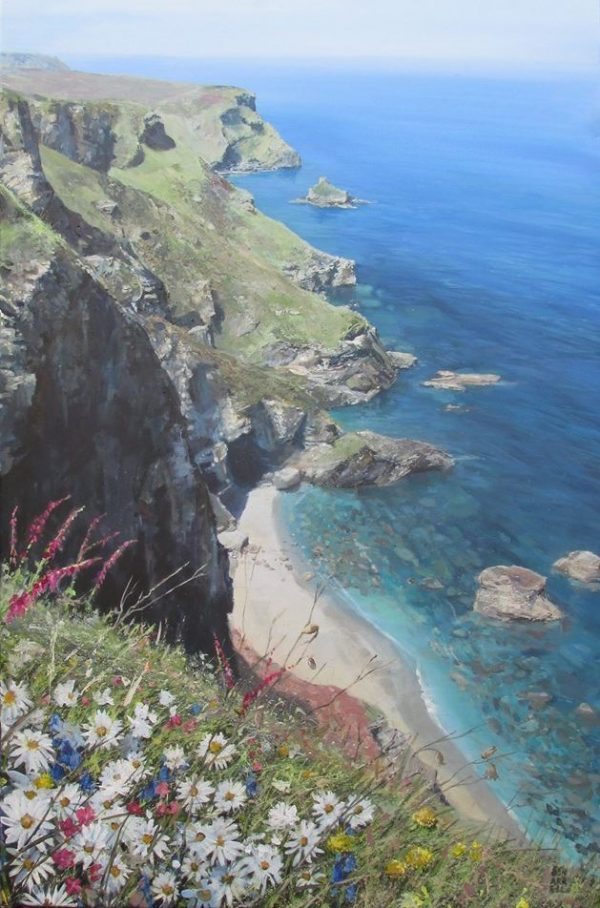 OX EYED DAISIES ON THE NORTH CLIFFS OF CORNWALL (2)